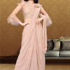 Delicate Chickoo Shaded Saree